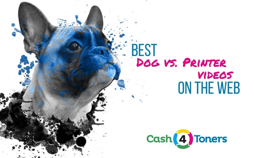 Best Dog vs. Printer Videos On The Web